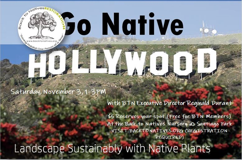 Go Native: Landscaping Sustainably with Native Plants for Birds and Butterflies
